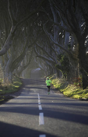 A jogger runs down Bregagh Road, Dark Hedges, Armoy, Northern Ireland, Wednesday, Feb. 10, 2016. The iconic tunnel of trees that features as the Kingsroad  in the smash-hit television series Game of Thrones has been painted with white line road markings in error by a contractor.  (AP Photo/Peter Morrison)