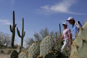 Photo - CORRECTS NAME OF CADDIE TO JP FITZGERALD, INSTEAD OF DAVE RENWICK - Rory McIlroy, left, walks off the 17th tee with his caddie, JP Fitzgerald, during a practice round for the Match Play Championship golf tournament Tuesday, Feb. 18, 2014, in Marana, Ariz. (AP Photo/Chris Carlson)