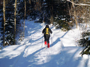 Photo - This December 2012 photo shows Donna Lawlor cross-country skiing on the Lodge to Lodge trail between camps at the Appalachian Mountain Club's backcountry wilderness lodge near Greenville, Maine. In winter, visitors can reach the lodges and cabins only by cross-country skiing in.  (AP Photo/Lynn Dombek)