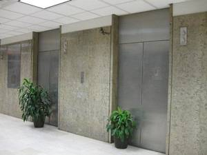 Photo - Plants block two of six elevators serving First National Center's east tower. The elevator shafts were replaced with heating and cooling connections to downtown's Trigen plant. Photo by Steve Lackmeyer, The Oklahoman