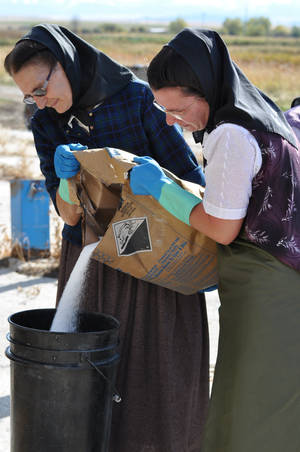 "Photo -   This undated image released by National Geographic Channels shows Hutterites Rita Hofer and Sarah Hofer pouring lye for soap in King Colony, Mont. ""Meet the Hutterites,"" a National Geographic documentary series about a small religious colony in rural Montana, debuts Tuesday, May 29. (AP Photo/National Georgraphic, Ben Shank)"