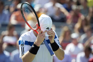 Photo - Andy Murray, of Britain, buries his head in his cap as he faces Ernests Gulbis, of Latvia during, at the Rogers Cup men's tennis tournament Thursday, Aug. 8, 2013, in Montreal. Gulbis won 6-4, 6-3. (AP Photo/The Canadian Press, Paul Chiasson)