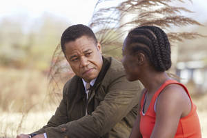 "Photo - Cuba Gooding Jr. and DeWanda Wise star in a new Hallmark Hall of Fame film, ""Firelight,"" premiering at 8 p.m. Sunday. ABC photo"
