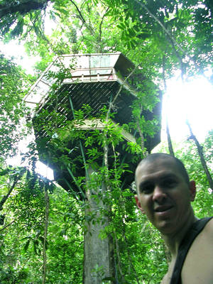Photo - Chris Kneifl stands beneath one of Finca Bellavista's tree house. The Costa Rica community features eight tree houses and a variety of other structures, all surrounded by the greenery and wildlife of the rain forest. Kneifl, a Spanish instructor at the University of Oklahoma, proposed to his wife during their visit to the Finca about 2 1/2 years ago. <strong> - PROVIDED</strong>