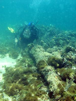 Photo - In this May 2003 photo, a diver measures a lombard cannon adjacent to a ballast pile, off the North coast of Haiti, at a site explorer Barry Clifford says could be the wreckage of Cristpher Colombus' flagship vessel the Santa Maria. Clifford said evidence that the wreck is the Santa Maria, which struck a reef and foundered on Christmas Day in 1492, includes ballast stones that appear to have come from Spain or Portugal and what looks like a 15th century cannon that was at the site during an initial inspection but has since disappeared. (AP Photo/Brandon Clifford)
