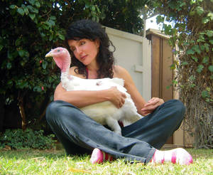 Photo -   In this Wednesday, November 14, 2012 photo provided by Karen Dawn, a pet, Rosie Turkey, is held in the lap of owner Karen Dawn in her front garden in Pacific Palisades, Calif. This was Rosie's first day in her new home. (AP Photo/Karen Dawn, Josh Garrett)
