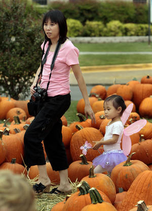 photo - Ming Kao and daughter Cara, 3, look for a spot to take a photograph at McFarlin Memorial United Methodist Church's annual pumpkin sale in Norman.  PHOTO BY STEVE SISNEY, THE OKLAHOMAN
