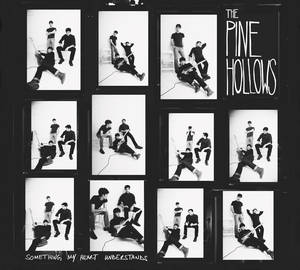 Photo - The Pine Hollows' sophomore album ?Something My Heart Understands.? <strong></strong>