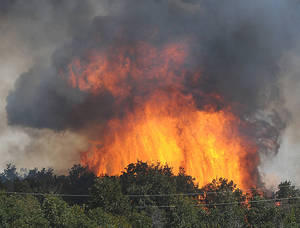 photo - Cedar trees burn Aug. 3 after a wildfire in the eastern part of the Cleveland County jumped 144th Ave SE near Cedar Lane in Slaughter.  AP Photo
