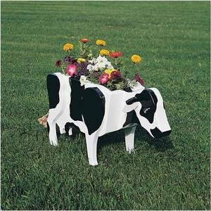 Photo - Build your own cow planter and enjoy its appeal for potted plants and flowers. PHOTO PROVIDED