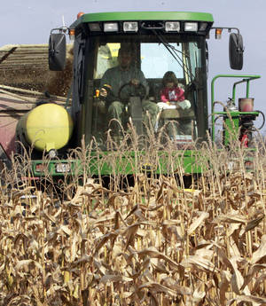 Photo - In this Oct. 21, 2013 photo, Tony Pouliot and his daughter, Allysson, harvest a corn field in Westford, Vt. Farmers can now use smart phones and computers to monitor and modify what nutrients they add to their soil, thanks to a new computer app created by a University of Vermont researcher. More than 50 Vermont farmers are now using goCrop, created with help from $400,000 grant, and farmers in other states are about to take advantage of the new tool. (AP Photo/Toby Talbot)