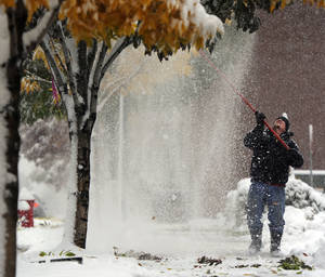 "Photo - Gabe Jones knocks snow from the trees Wednesday at Englewood Civic Center in Englewood, Colo. He expected to spend most of the day working on the project, ""I'd have to say there's 500 trees ... easy.""  AP Photo"
