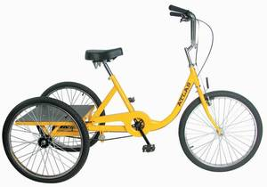Photo - This adult tricyle is the Atlas Cargo 24 from Sun Tricycles. PHOTO PROVIDED. <strong></strong>