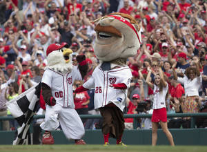 photo -   Teddy Roosevelt, one of the Washington Nationals racing president, celebrates after crossing the finish line winning the Presidents Race for the first time in the event's seven year history at Nationals Park during a baseball game between the Washington Nationals and Philadelphia Phillies in Washington, Wednesday, Oct. 3, 2012. (AP Photo/Manuel Balce Ceneta)