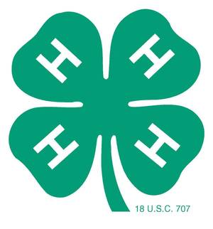 Photo - 4-H CLOVER LOGO