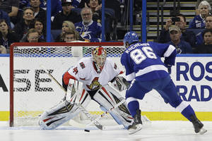 Photo - Tampa Bay Lightning right wing Nikita Kucherov (86), of Russia, prepares to score on Ottawa Senators goalie Craig Anderson (41) during a shootout in an NHL hockey game Thursday, Jan. 23, 2014, in Tampa, Fla. The Lightning won the game 4-3. (AP Photo/Chris O'Meara)