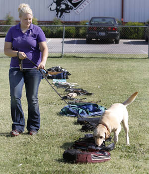 Photo - Dog trainer Abi Herring and Maddie demonstrate Maddie's drug detection abilities Tuesday at K9 University in Oklahoma City. Photos By Steve Gooch,  The Oklahoman