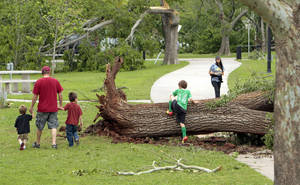 Photo - A family looks at storm damage on Saturday, April 14, 2012, in Norman, Okla.  Dozens of trees were uprooted by Friday's tornado in Abe Andrews Park.  Photo by Steve Sisney, The Oklahoman