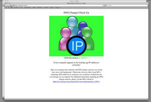 Photo - This DNS Changer Working Group (DCWG) webpage is shown when the computer does not have the DNS malware. AP Photo <strong>Uncredited - AP</strong>