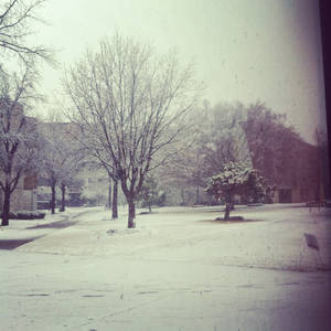 photo - OSUOKC snow!