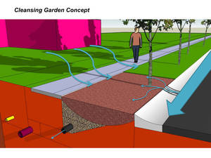 Photo - This drawing illustrates the rain garden concept: Stormwater from a lawn is directed to the specially landscaped area where materials in the soil help collect pollutants to keep them out of groundwater.