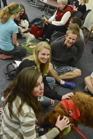 Photo - Montana State University students gather around Intermountain Therapy Animals volunteer Sandy Watson and her 4-year-old Maltese named Sophie during the Paws to de-Stress program at the Renne Library on campus of Montana State University on Thursday, April 25, 2013, in Bozeman, Mont. Intermountain Therapy Animals is bringing dogs to campus this week and next to help students take a break from the stress of studying for and taking semester exams. (AP Photo/Bozeman Daily Chronicle, Mike Greener)