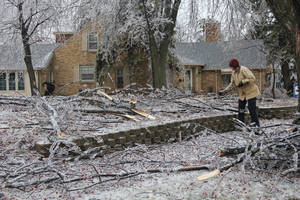 Photo - Worthington resident Kathy Carlson picks up tree branches that came down as a result of eight-tenths of an inch of ice that ravaged southwest Minnesota the day before, Wednesday, April 10, 2013 in Worthington, Minn. (AP Photo/The Daily Globe, Julie Buntjer)