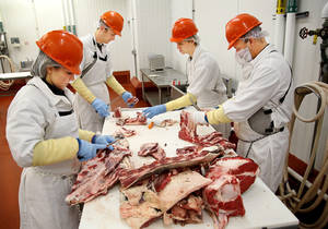 photo - Kyle Flynn, far right, meat plant manager at the Robert M. Kerr Food and Products Center on the campus of Oklahoma State University, assists undergraduate student employees Shannon White, Shade Hughes and Ben Underwood as they cut up a cattle carcass Wednesday.  Photo by Jim Beckel,  The Oklahoman