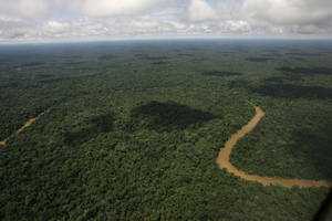 Photo - FILE - In this May 17, 2007, file photo, An aerial view of the Yasuni National Park, in Ecuador's northeastern jungle. Ecuador's electoral council on Tuesday May, 6. 2014, rejected as insufficient a petition drive calling for voters to decide whether to proceed with oil drilling in a pristine Amazon nature reserve as planned by President Rafael Correa. (AP Photo/Dolores Ochoa, File)