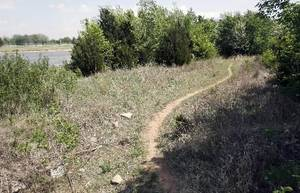 Photo - File photo - This is one of the remote areas at Hobie Point at Lake Hefner in Oklahoma City, OK, where police have made a number of arrests for lewd conduct, Friday, April 24, 2009. Photo by Paul Hellstern