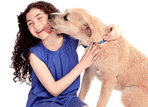 "Photo - Lilla Crawford, who will play the role of Annie in a new production of ""Annie,"" which opens this fall in New York, gets a kiss from Sunny, a terrier mix who will play Sandy. Sunny was rescued from a Houston animal shelter. AP PHOTO"