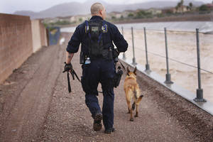 Photo -   Henderson Police Officer Craig Mancuso and his dog Rony conduct a search of the Duck Creek Channel for 17-year-old Green Valley HIgh School student William Mootz in Henderson, Nev. on Aug. 22, 2012. Crews resumed the search Thursday for Mootz, who somehow fell into a drainage wash in Henderson, which had filled quickly after a morning downpour a day earlier. (AP Photo/Las Vegas Review-Journal, Jason Bean)