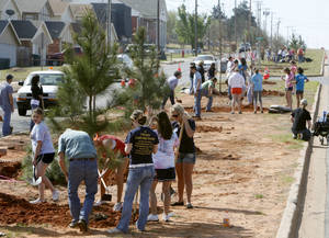 photo - Edmond city workers and citizens plant 37 trees in the median on Chowning Avenue between Danforth Road and Ayers in celebration of Arbor Day in 2011. Edmond is teaming up with residents for a Foster-A-Tree program designed to replace trees that died or were removed as a result of the weather.  Photo by Paul Hellstern, The Oklahoman Archives