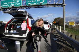 photo - Heidi Blood carries her dog to the side of the road for a drink of water while waiting in line with her car along Interstate 5 north of Los Angeles on Friday, Jan. 11, 2013. The California Highway Patrol has partially reopened a 40-mile stretch of Interstate 5 north of Los Angeles that was closed for many hours due to snow. The CHP began escorting southbound motorists through the high mountain pass Friday morning. Northbound lanes are still closed. (AP Photo/Nick Ut)