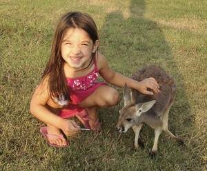 Photo - This photo of 4-year-old Layla Menhusen with her pet kangaroo Lucy Sparkles was taken in October.  Photo Provided