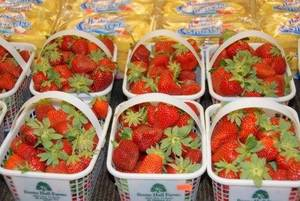 Photo - Boone Hall Farms & Plantation strawberries. (Photo provided)
