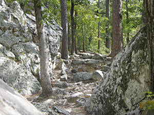Photo - Robbers Cave State Park has several trails for hikers. Photo provided by Oklahoma Tourism     ORG XMIT: 0810161735489196