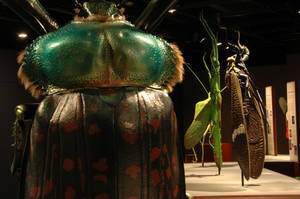 "Photo - The camouflage of bugs is highlighted in this display of statues created by artist Lorenzo Possenti for the ""Bugs ... Outside the Box"""