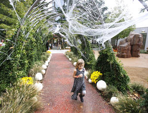 Photo - A child walks on a path at Pumpkinville at the Myriad Botanical Gardens in Oklahoma City.  Photo by PAUL HELLSTERN, the Oklahoman