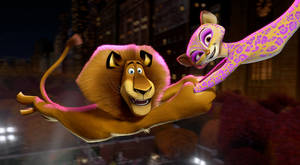 "Photo -   This film image released by DreamWorks Animation shows, Alex the Lion, voiced by Ben Stiller, left, and Gia the Jaguar, voiced by Jessica Chastain, in a scene from ""Madagascar 3: Europe's Most Wanted."" (AP Photo/DreamWorks Animation - Paramount Pictures)"
