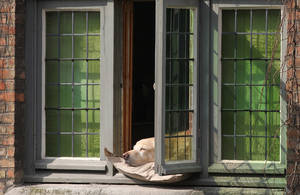 Photo - A dog sleeps in the sun,  along the old canals in Bruges, Belgium, Friday, March 29, 2013. Low temperatures are predicted for the upcoming Easter weekend in large parts of Europe. (AP Photo/Yves Logghe)