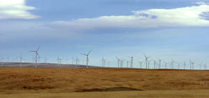 Photo - This Thursday, Nov. 7, 2013 photo shows the Rim Rock wind farm near Cut Bank, Mont. Wind energy company NaturEner is in a dispute with a California utility over whether enough has been done to protect eagles that nest near the 126-turbine wind farm. (AP Photo/Matthew Brown)