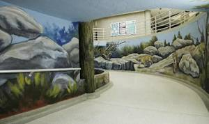 photo - New mural of cougars, the school mascot, at Sequoyah Middle School in Edmond, Wednesday, April 11, 2012. Photo by Doug Hoke, The Oklahoman