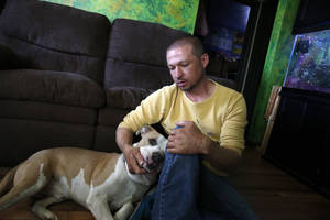 Photo - Wayne Winkler, who suffered burns to 12 percent of his body when butane fumes ignited while he was making hash oil at home, pets his dog Bailey, in his living room, in Denver, May 1, 2014. Winkler agreed to talk to The Associated Press to send a message that making hash oil at home is highly dangerous. Since marijuana became legal on Jan. 1, the state has seen nearly three dozen explosions caused by people making pot concentrates at home, and authorities are grappling with what to do about it. (AP Photo/Brennan Linsley)