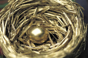 Photo - Gold egg in nest