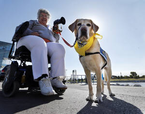 Photo - Dawn Ramsey, event coordinator, and her hearing assistance dog Penela, take part in DogFest Walk 'n' Roll Oklahoma City to benefit Canine Companions on Saturday. PHOTO BY STEVE SISNEY, THE OKLAHOMAN <strong>STEVE SISNEY - THE OKLAHOMAN</strong>