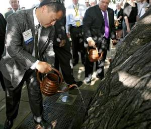 Photo - Mike Gin, mayor of Redondo Beach, California, waters the Survivor  Tree  during a service at the Oklahoma City National Memorial and Museum in Oklahoma City on Sunday, June 13, 2010. The ceremony was one of the events attended by mayors from around the country during the U.S. Conference of Mayors. Photo by John Clanton