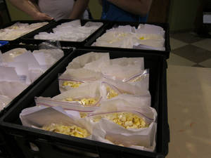 Photo - Lunch sacks are stored in plastic bins waiting to be taken to buses driven by  Truth Baptist Church pastors and volunteers. <strong>Carla Hinton - The Oklahoman</strong>