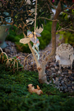"photo - Miniatures from a fairy garden, pictured in ""Fairy Gardening"" by Julie Bawden-Davis and Beverly Turner. Photo provided."
