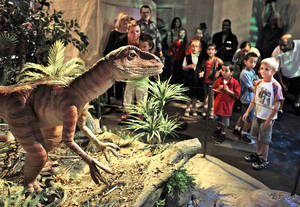 Photo - Visitors get a look at a Deinonychus on Thursday during a test  tour of a new exhibit, Red Dirt Dinosaurs, at Science Museum Oklahoma. Photo by David McDaniel, The Oklahoman <strong>David McDaniel</strong>